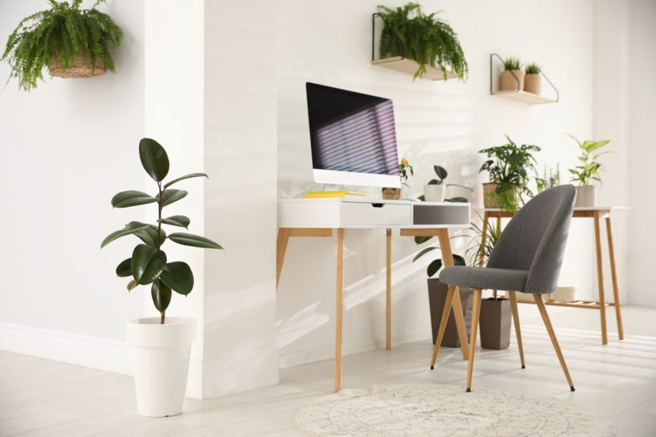 Modern,Workplace,In,Room,Decorated,With,Green,Potted,Plants.,Home